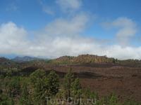 в сторону долины Оротава пейзаж меняется
