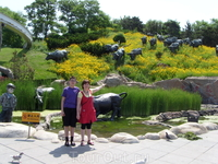 Сафарипарк. На входе пасутся буйволы, правда они статуи!!!