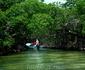 всегда беру экскурсии по мангровым зарослям. И ВАМ СОВЕТУЮ