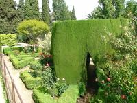 Сада Альгамбры.