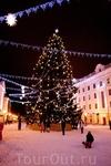 Рождественская ель на площади. Она целая, то есть это не нанизанные ветки на металлический каркас, как часто делают у нас в Питере.