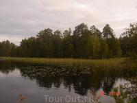 берег озера Пиелисярви