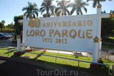 Сегодня по плану Лоро-парк - это многопрофильный парк, сочетающий в себе зоопарк, ботанический парк, дельфинарий и даже цирк. И все это так сказать, под одной крышей. Вероятно, это самое посещаемое ту