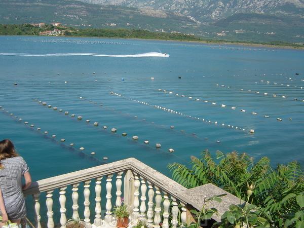 эротических черногория фотоотчет туристов надо преувеличивать