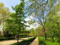 Бóльшая часть парка местами напоминает лес с тропинками, но примерно третья часть - это стриженные кусты, газоны и мраморные статуи. Эта часть называется Партер.