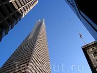 Transamerica Pyramid является самым высоким и самым узнаваемым небоскребом в Сан-Франциско!