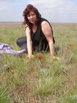 Калмыцкие степи  весной -  это тюльпаны.