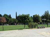 Городской пейзаж, за зеленью жилые дома.