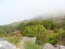 В горах Мадейры