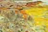 Чарующий вулкан Даллол в Эфиопии