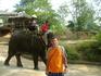 22 декабря 2010. Квай. Слоновья ферма.
