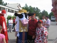 В гости к нам молочная корова из г.Грязовца.