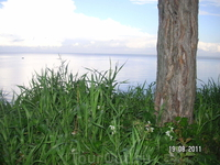 Вид на залив со стены