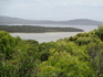 Вид на заливы Норналап и Уолпол со стороны океана