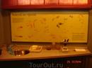 всё для удобства юных натуралистов. В микроскоп можно рассмотреть мох, пёрышки, песок, кору...
