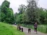 Современный Шерлок Холмс вышел на прогулку, сидит, покуривает трубку, смотрит на озеро :) А мимо прогуливаются собаки и их хозяева, пробегают бегуны, и ...