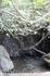 Купель Афродиты – это природный грот с каменной чашей – бассейном и небольшим водопадом.
