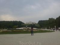 Дворец Шенбрунн- общий вид части  парка.