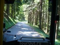 Подъем на гору Кельштайн совершается на  автобусах,которые отходят от информационного и сувенирного центра.
