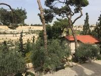Церковь Марии Магдалины, куда везут всех православных туристов.