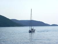 Катера и яхты бороздят водные просторы.