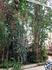 Йоэнсуу. В ботаническом саду.