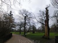 Типично английский парк - дорожки, газоны и немного грозного вида старые деревья. По травяным газонам парка разрешено ходить, древние деревья — вязы, дубы ...