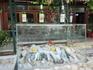 Витрина ресторана Эль Греко- недалеко от отеля - цены средние, как везде.