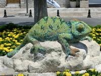 Эта милая саламандра расположилась на набережной Бодрума.