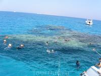 самый большой и красивый аквариум в мире, но опасный...