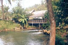 Место купания слоников