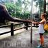 Кормить этих удивительных животных с рук оказалось одно удовольствие.