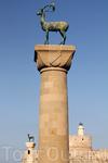 Знаменитые &quotолени&quot Родоса - символ всего острова. Древнее название острова - Офиуса, что означает &quotостров змей&quot. В древние времена змей на острове было очень много и от них некуда было
