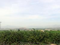 Название Мурсия происходит от арабского города Медина Мурсиха, основанного Абдерраманом II на заре VIII в. на месте бывшего римского поселения. Сначала ...
