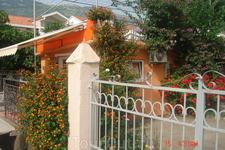 Во дворе каждого дома цветы