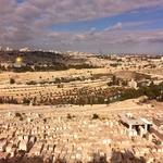 Красивейший вид с Масличной горы на старый город Иерусалим