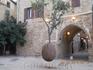 Висячее апельсиновое дерево в старом Яффо