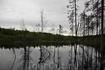 какое-то озеро в лесах, погода вновь стала хмуриться...