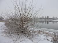 Очень люблю такую таинственную и снежную погоду