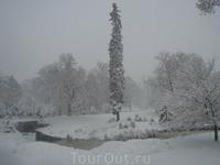 Снегопад в Центральном парке