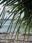 ясное утро на острове, ах как же приятно просыпаться таким утром...
