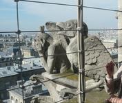 Сентябрь 2012 Paris. Химеры собора Парижской богоматери.
