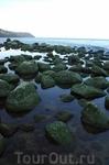 Один из пейзажей побережья