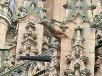 Стройка то шла, то останавливалась, например, почти весь 17 век работы не велись.  1713 году стройка снова возобновилась под руководством одного из членов ...