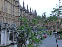 Парламент. Готические здания Вестминстерского дворца, здания палаты Общин и палаты Лордов, объединенные одним именем The Houses of Parliament, отстроенные после пожара в 1840-1870 годах.