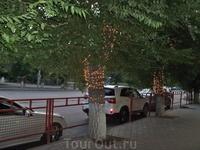 А напротив украшенное лампочками  дерево