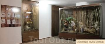 Оренбургский областной краеведческий музей