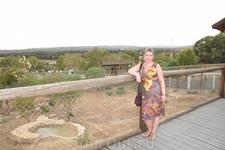 в зоопарке Фригия. посетители ходят по мостику, львы внизу