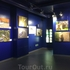 Выставка фотографий в маретариуме
