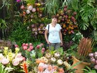 Южно-Китайский ботанический сад